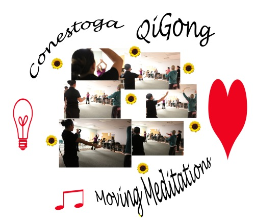 montage Kick off qigong CQMM